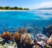 Bali Barat National Park Stock Image