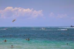 Bali beach. Fun sports ocean Royalty Free Stock Photography