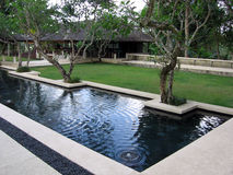 Bali. Café de paradis Images libres de droits