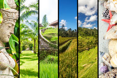 Bali collage Royalty Free Stock Photo