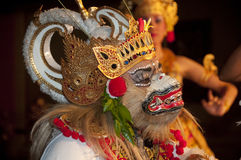 Bali culture dancing Stock Images