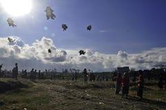 Bali drakefestival Royaltyfri Fotografi