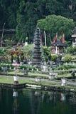 Bali garden. Royalty Free Stock Images