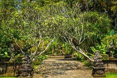 Bali garden style gate with traditional stone statue with green tree and stone road path - photo royalty free stock images