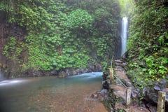 bali git tropikalna siklawa zdjęcie royalty free