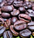 Bali ha arrostito il chicco di caffè fotografia stock
