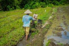 BALI, INDONÉSIA - 5 DE ABRIL DE 2017: Fazendeiro que cleanning a área para plantar algumas sementes do arroz em uma terra inundad Imagem de Stock Royalty Free