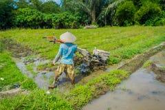 BALI, INDONÉSIA - 5 DE ABRIL DE 2017: Fazendeiro que cleanning a área para plantar algumas sementes do arroz em uma terra inundad Imagens de Stock Royalty Free