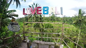 BALI, Indonésia - 25 de março: Movimento lento do terraço do arroz de Tegallalang em uma ilha tropical de Bali, Indonésia Arroz d vídeos de arquivo