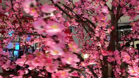 BALI, INDONESIË - FEBRAURY 11, 2018: Roze sakura in het winkelcomplex stock footage