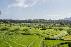 Bali, Indonesia immagine stock