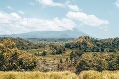 Bali, Indonesia immagine stock libera da diritti