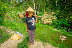 BALI, INDONESIA - APRIL 05, 2017: Women walk in the rice fields wearing a rice hat and holding with her hands a stick Stock Photos