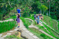 BALI, INDONESIA - 5 APRILE 2017: Gente non identificata che gode di bello paesaggio con i terrazzi verdi del riso vicino Fotografia Stock Libera da Diritti