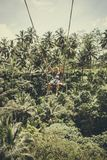BALI, INDONESIA - 5 DE DICIEMBRE DE 2017: Hombre turístico joven que balancea en el acantilado en la selva tropical de la selva d Imagen de archivo