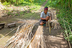 BALI, INDONESIA - DECEMBER 25, 2016: Balinese man carving bamboo Stock Photography