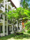 Bali, Indonesia - December 25, 2008: The park in Ayodya Resort Royalty Free Stock Image