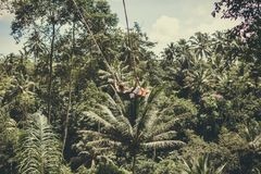 BALI, INDONESIA - DECEMBER 5, 2017: Young tourist man swinging on the cliff in the jungle rainforest of a tropical Bali Royalty Free Stock Images