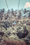 BALI, INDONESIA - DECEMBER 5, 2017: Young tourist man swinging on the cliff in the jungle rainforest of a tropical Bali Stock Photography