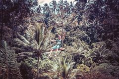BALI, INDONESIA - DECEMBER 5, 2017: Young tourist man swinging on the cliff in the jungle rainforest of a tropical Bali Stock Image