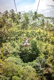 BALI, INDONESIA - DECEMBER 5, 2017: Young tourist man swinging on the cliff in the jungle rainforest of a tropical Bali Royalty Free Stock Image