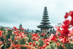 Bali, Indonesia royalty free stock photography