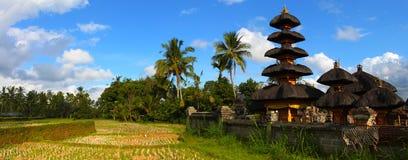 bali indonesia liggande royaltyfria bilder