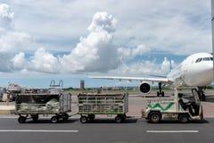 BALI/INDONESIA-MARCH 27 2019年:机场车拉扯乘客行李到到来终端,当与积云的好日子 免版税库存图片