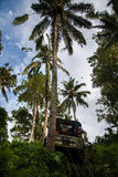Bali. Indonesia - March 7, 2013 SUV in the tropical jungle. Royalty Free Stock Photos