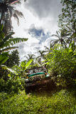Bali. Indonesia - March 7, 2013 SUV in the tropical jungle. Stock Images