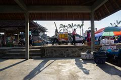 BALI/INDONESIA-MAY 15 2019: the atmosphere of the Kedonganan-Bali fish market. Fishermen passing by bring their catch to be sold royalty free stock photos