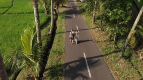 Aerial view of young couple of tourists walking on the road among coconut palms. Bali island. Indonesia royalty free stock images