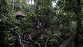 BALI, INDONESIA - OCTUBRE DE 2017: Turistas en el bosque sagrado del mono, Ubud Indonesia almacen de metraje de vídeo