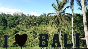 Bali, Indonesien Stockbild