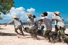 BALI INDONESIEN - APRIL 26, 2017: Paradisstrandarbetare som kommer med ett stort träd på den Bali ön, Indonesien arkivfoton