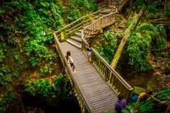 BALI, INDONESIEN - 5. MÄRZ 2017: Nicht identifizierte Leute, die Fotos von Makakenaffen auf Drachebrücke bei Ubud heilig machen Lizenzfreie Stockfotografie
