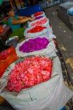 BALI INDONESIEN - MARS 08, 2017: Oidentifierat folk i det fria som den Bali blomman marknadsför, vitsäckar i rad, blommor, är Royaltyfria Foton