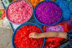 BALI INDONESIEN - MARS 08, 2017: Utomhus- Bali blommamarknad Blommor används dagligen av balinesen Hindus som symboliska Royaltyfri Bild
