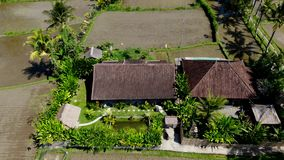 BALI INDONESIEN - SEPTEMBER 10, 2018: terrasserar den flyg- videoen för surret 4K av den lyxiga villan med härlig sikt på ett ris arkivfilmer