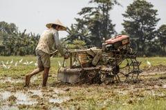 Bali, Indonezja/- 03 05 2018: mężczyzna orze pole z dużym blok Obrazy Royalty Free