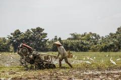 Bali, Indonezja/- 03 05 2018: mężczyzna orze pole z dużym blok Obrazy Stock