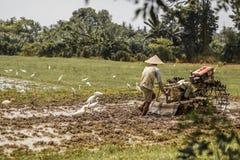 Bali, Indonezja/- 03 05 2018: mężczyzna orze pole z dużym blok Fotografia Royalty Free