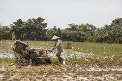 Bali, Indonezja/- 03 05 2018: mężczyzna orze pole z dużym blok Obraz Stock