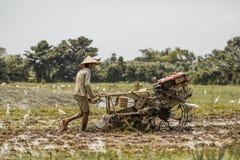 Bali, Indonezja/- 03 05 2018: mężczyzna orze pole z dużym blok Zdjęcie Royalty Free