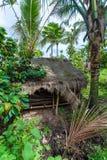 BALI-INSEL, INDONESIEN - 25. AUGUST 2008: Eine kleine Hütte im Jun Lizenzfreie Stockbilder