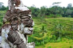 Old hindu architecture and terraces. Bali, Indonesia. Royalty Free Stock Images