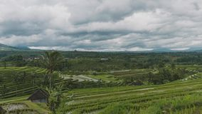 Bali Jatiluwih Rice Field terrace in Bali Indonesia on a partly cloudy day.