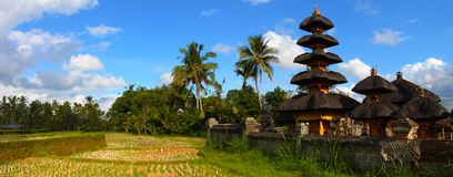 bali krajobraz Indonesia Obrazy Royalty Free