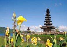 bali kwitnie świątynię Zdjęcia Royalty Free