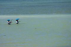 Bali is magical. Two anglers goes to sea to catch fish on a riverbank Royalty Free Stock Photos